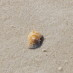 Blog posts are like grains of sand